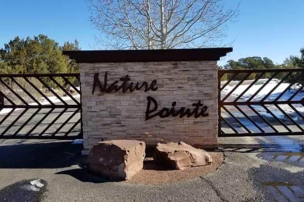 2 Mustang Mesa Trail - Photo 1