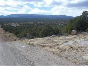 Shiraz Ranch, Tajique, NM 87016 (MLS #975762) :: The Buchman Group