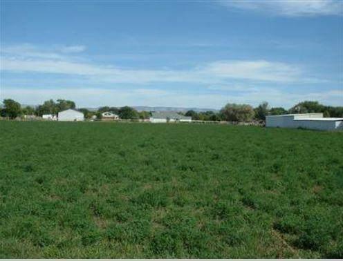 6647 Salida Del Sol SW, Albuquerque, NM 87105 (MLS #977149) :: The Buchman Group