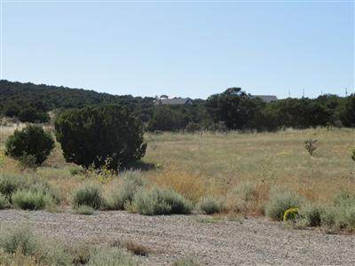 73 Joe Mae Road, Edgewood, NM 87015 (MLS #977162) :: Campbell & Campbell Real Estate Services