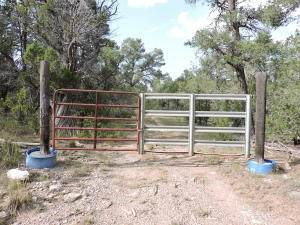 43 Tebbetts Road, Edgewood, NM 87015 (MLS #978375) :: Campbell & Campbell Real Estate Services