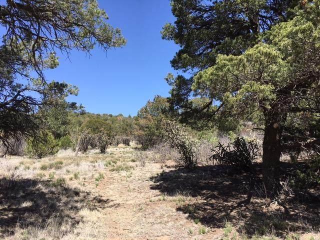 0 County Line Road, Edgewood, NM 87015 (MLS #978512) :: The Bigelow Team / Red Fox Realty