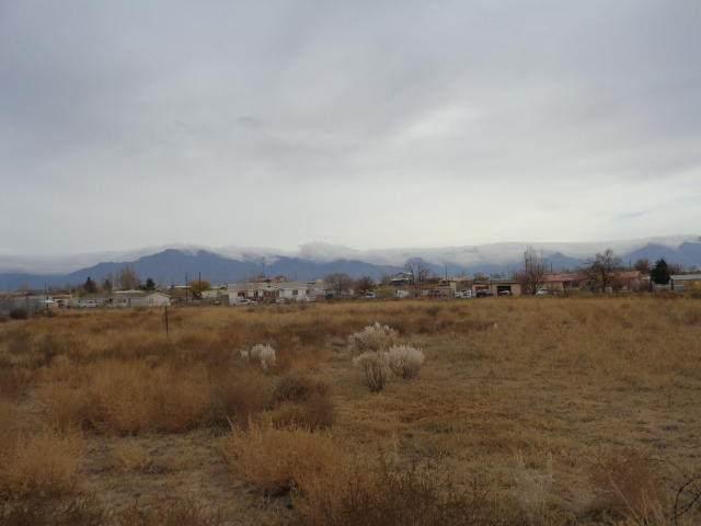 Vista Cedro, Los Lunas, NM 87031 (MLS #981531) :: The Buchman Group