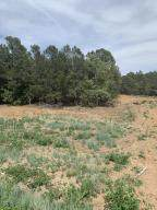 53 Constellation Drive, Tijeras, NM 87059 (MLS #981976) :: Keller Williams Realty