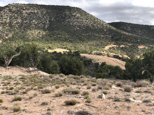 14 San Mateo Trail, Mountainair, NM 87036 (MLS #982146) :: The Buchman Group