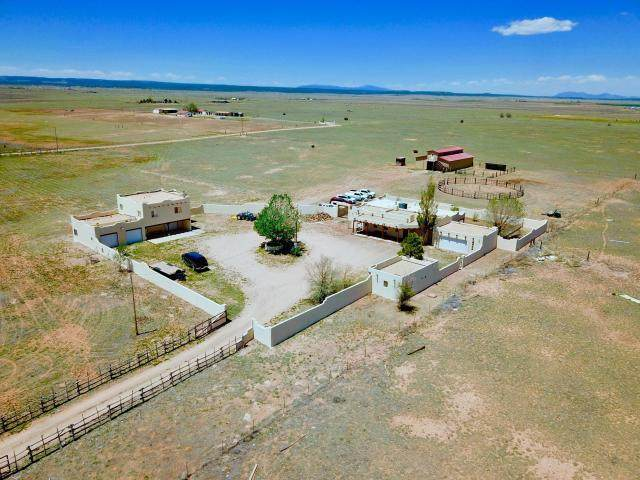 253 Howell Road, Estancia, NM 87016 (MLS #982533) :: The Buchman Group
