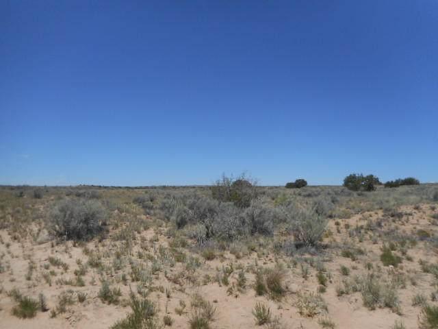 4309 Kaiser Rd (U-17 B-29 L-3) NE, Rio Rancho, NM 87144 (MLS #983171) :: The Buchman Group