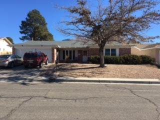 3704 Madrid Drive NE, Albuquerque, NM 87111 (MLS #983384) :: Campbell & Campbell Real Estate Services