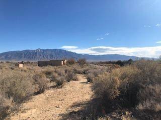 172 Tierra Encantada, Corrales, NM 87048 (MLS #983963) :: Campbell & Campbell Real Estate Services
