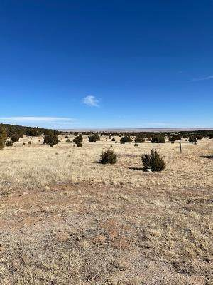 0 Tenorio, Edgewood, NM 87015 (MLS #985583) :: The Buchman Group