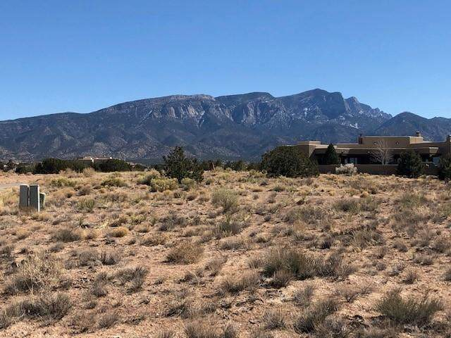 Brazos Trail - Lot 61, Placitas, NM 87043 (MLS #987209) :: The Buchman Group