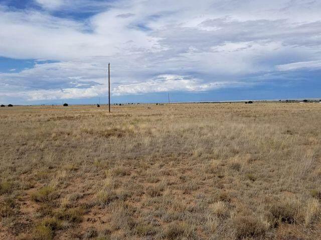 Gates Farm, Estancia, NM 87016 (MLS #988653) :: Campbell & Campbell Real Estate Services