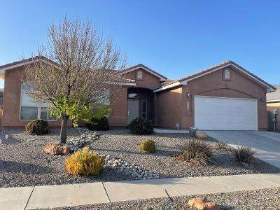 8919 Sandwater Road NW, Albuquerque, NM 87120 (MLS #988784) :: Keller Williams Realty