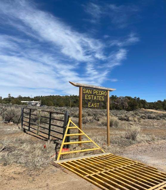 Lt 57 Unit 2 San Pedro Estates, Regina, NM 87046 (MLS #988829) :: The Buchman Group
