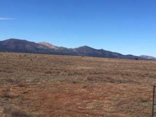 13 Rancho Del Cielo, Edgewood, NM 87015 (MLS #989768) :: Campbell & Campbell Real Estate Services