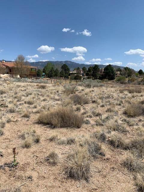 Oakland Avenue NE, Albuquerque, NM 87122 (MLS #990330) :: The Buchman Group