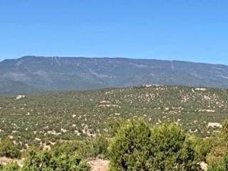 31 Turquoise Drive, Sandia Park, NM 87047 (MLS #991206) :: Campbell & Campbell Real Estate Services