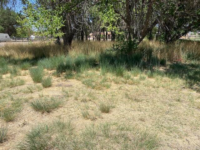 0 Roberts Circle, Los Lunas, NM 87031 (MLS #991761) :: The Buchman Group