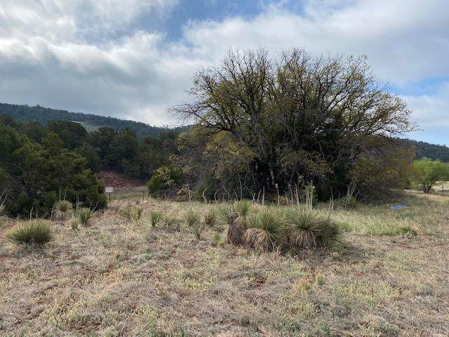 2-B Snow Line Road, Cedar Crest, NM 87008 (MLS #992200) :: Campbell & Campbell Real Estate Services