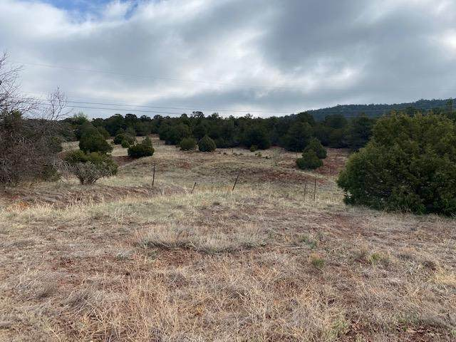 2-A Snow Line Road, Cedar Crest, NM 87008 (MLS #992201) :: Campbell & Campbell Real Estate Services