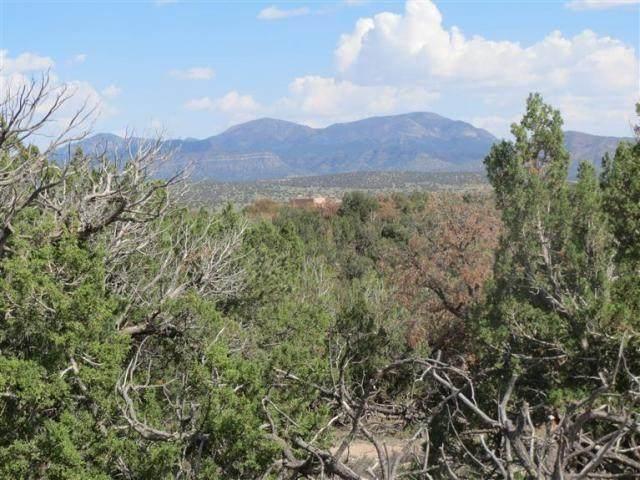 Stagecoach Road, Sandia Park, NM 87047 (MLS #993191) :: Sandi Pressley Team