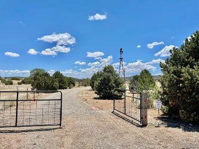 56 Scott Road, Edgewood, NM 87015 (MLS #993588) :: The Buchman Group