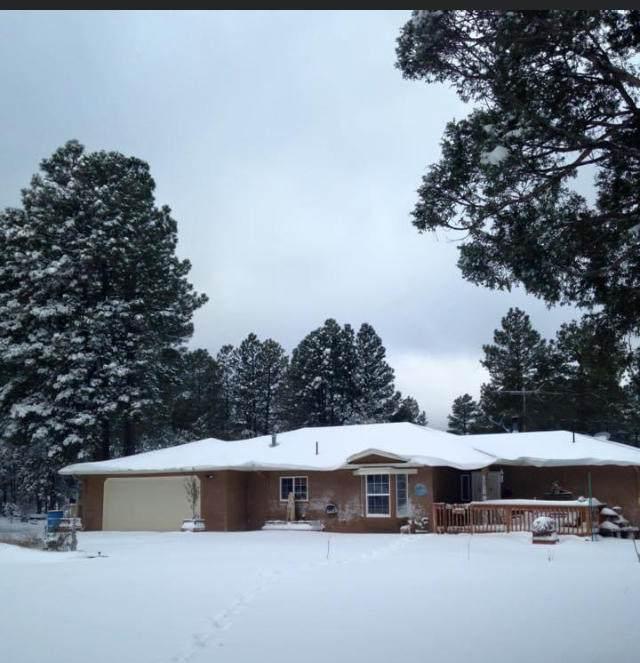 10259 New Mexico 337, Tijeras, NM 87059 (MLS #993704) :: Keller Williams Realty