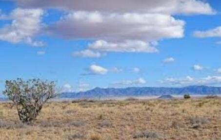Rancho Rio Grande L38/B2/U10, Belen, NM 87002 (MLS #993935) :: Campbell & Campbell Real Estate Services