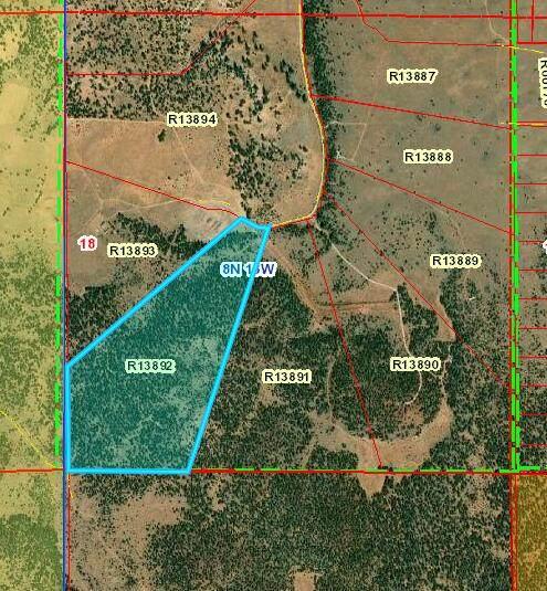 Tract 21 James Valley Ranch, Ramah, NM 87321 (MLS #993958) :: Sandi Pressley Team
