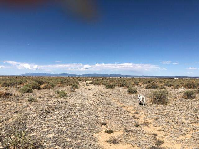 56 Burroughs Road, McIntosh, NM 87032 (MLS #994051) :: Campbell & Campbell Real Estate Services