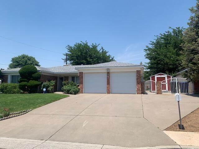 9809 Pitt Place NE, Albuquerque, NM 87111 (MLS #994202) :: Sandi Pressley Team