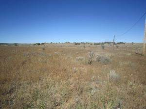 0 Dingo Road, Moriarty, NM 87035 (MLS #994250) :: The Buchman Group