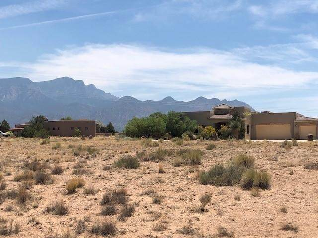Lot 69 Mimbres Court, Placitas, NM 87043 (MLS #994329) :: Campbell & Campbell Real Estate Services