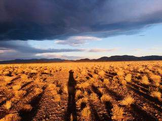 00 Highland Springs Ranch -3-59, Socorro, NM 87801 (MLS #994739) :: Sandi Pressley Team