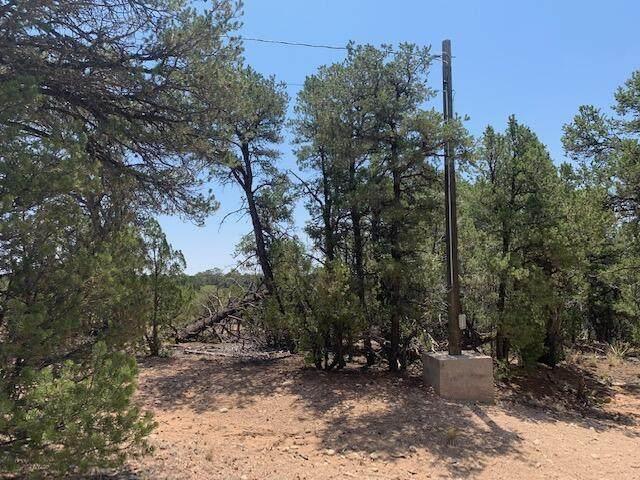 18 William Bonney Road, Edgewood, NM 87015 (MLS #994880) :: Sandi Pressley Team