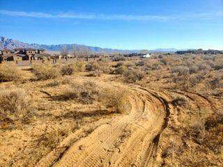 57 Don Julio Road, Corrales, NM 87048 (MLS #996437) :: Campbell & Campbell Real Estate Services