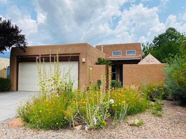 6012 Placer Drive NE, Albuquerque, NM 87111 (MLS #997084) :: Sandi Pressley Team