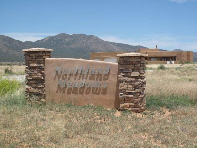 63 Northland Meadows Drive, Edgewood, NM 87015 (MLS #997400) :: Campbell & Campbell Real Estate Services