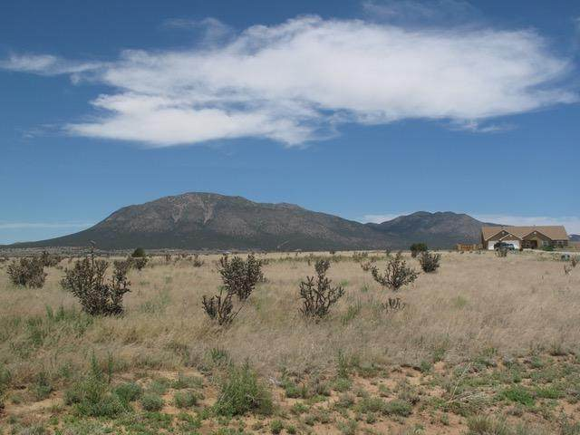 66 Northland Meadows Drive, Edgewood, NM 87015 (MLS #997401) :: Campbell & Campbell Real Estate Services