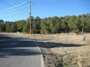 115 Via Sedillo Road, Tijeras, NM 87059 (MLS #997562) :: Campbell & Campbell Real Estate Services