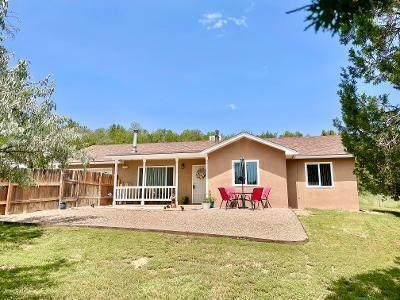 77 Windmill Road, Edgewood, NM 87015 (MLS #999109) :: Berkshire Hathaway HomeServices Santa Fe Real Estate