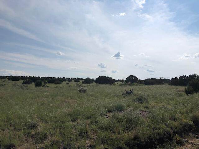 Lot 187 Campfire Road, Magdalena, NM 87825 (MLS #999472) :: Campbell & Campbell Real Estate Services