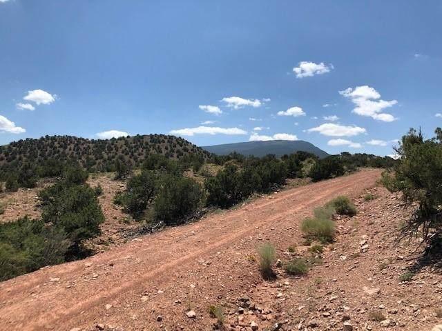 2-A Camino Del Cuervo, Placitas, NM 87043 (MLS #999492) :: Campbell & Campbell Real Estate Services