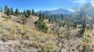 Lot 4 Cerro Redondo, Jemez Springs, NM 87025 (MLS #1000600) :: Campbell & Campbell Real Estate Services