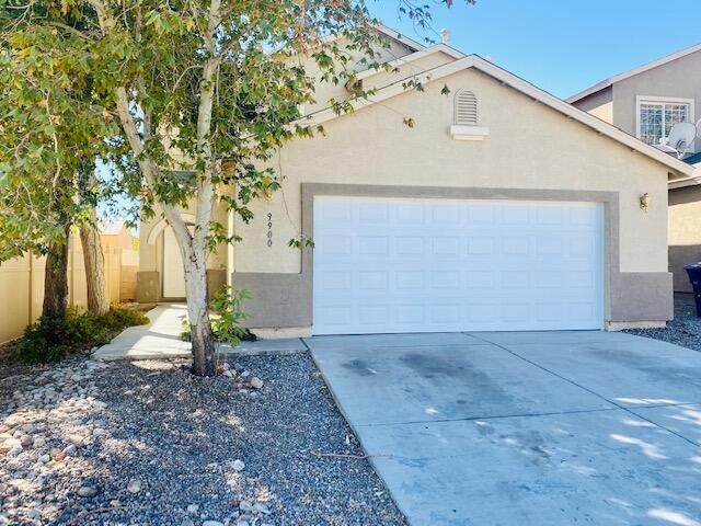 9900 Pinot Noir Avenue SW, Albuquerque, NM 87121 (MLS #1002938) :: Campbell & Campbell Real Estate Services