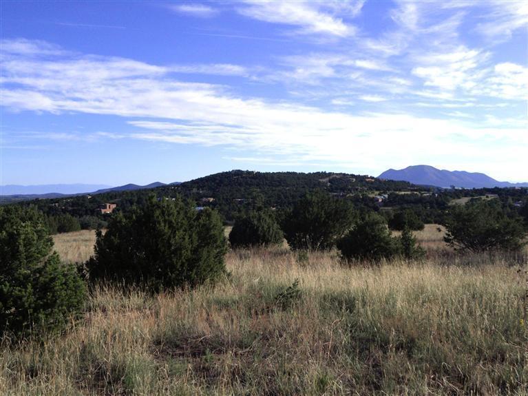 46 Los Pecos Loop - Photo 1