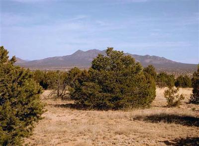 1 Luna Azul, Sandia Park, NM 87047 (MLS #719487) :: Campbell & Campbell Real Estate Services