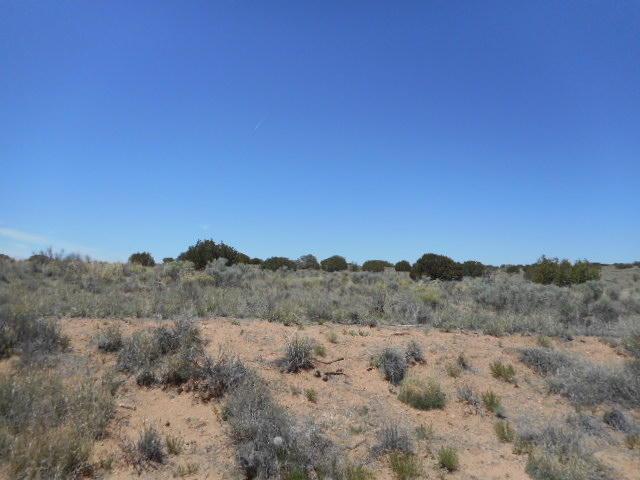 0 19TH (U7BYL55&56) Avenue, Rio Rancho, NM 87144 (MLS #738488) :: Will Beecher at Keller Williams Realty
