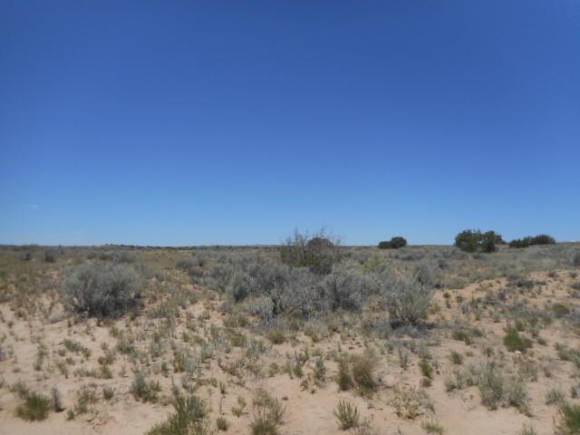 0 Farol Road, Rio Rancho, NM 87144 (MLS #749901) :: Will Beecher at Keller Williams Realty