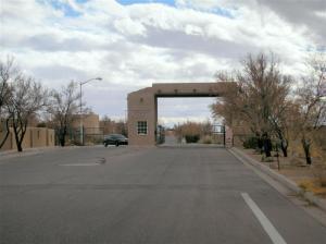 2214 Calle De Ortiz SW, Los Lunas, NM 87031 (MLS #837233) :: The Buchman Group